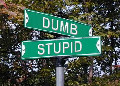 dumb_and_stupid.JPG